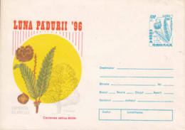 ROUMANIE - 1996 - Entier Postal Neuf - Luna Padurii '96 - Châtaigner - Entiers Postaux