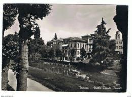 TREVISO:  VIALE  TRENTO  TRIESTE  -  FOTO  -  F.LLO  TOLTO  -  FG - Treviso