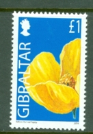 Gibraltar: 2004/06   Wild Flowers     SG1105   £1      MNH - Gibraltar