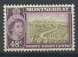 MONTSERRAT  YVERT  140    MNH  ** - Montserrat
