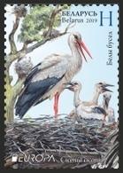 Belarus 2019 Europa  Bird Birds Fauna Stork Set 2v MNH - Bielorussia