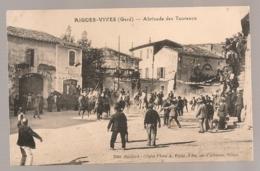 AIGUES VIVES ABRIVADO DE TAUREAUX  B790 - Aigues-Vives