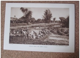 Peche Dans Une Mare Tonkin   Photogravure Format 20 Cm X 29 Cm. - Vieux Papiers