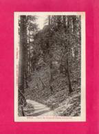 88 Vosges, Epinal, Chemin Des Ruines De L'Ancien Château-Fort, 1919, (A. Bouteiller) - Epinal