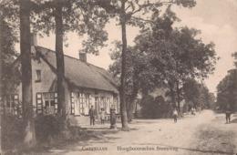 KAPELLEN 1916 HOOGBOOMSCHEN STEENWEG MET MOOIE ANIMATIE - FELDPOST - Kapellen