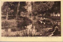 79 NIORT Le Marais Poitevin, La Vieille Sèvre Au Gué De Magné ; Barques - Animée - Niort