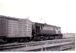 Foto  Photo - Trein Train Locomotive - San Martin - RSD 16 - Alco Montreal - Luduena 1977 - Trains