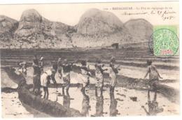 MIARINARIVO Madagascar Carte Postale Ob 29/02/1908 5c Type Groupe Vert Jaune Yv 43 Circulée Dest Château Oléeon Charente - Madagascar (1889-1960)