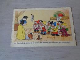 Carte ( 444 )  Fantaisie  Fantasie  -  Thème : Disney  Blanche Neige  Sneeuwwitje  7 Dwergen  Nains ( Nain ) - Disneyworld