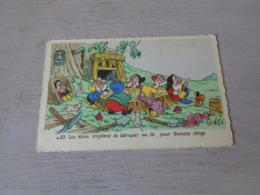 Carte ( 445 )  Fantaisie  Fantasie  Thème : Disney   Blanche Neige  Sneeuwwitje  7 Dwergen  Nains ( Nain ) - Disneyworld