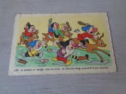 Carte ( 446 )  Fantaisie  Fantasie  Thème : Disney   Blanche Neige  Sneeuwwitje  7 Dwergen  Nains ( Nain ) - Disneyworld