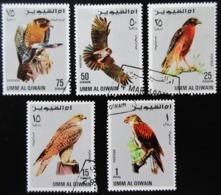 Umm Al-Qiwain 5 Timbres Oiseaux Rapaces - Adler & Greifvögel