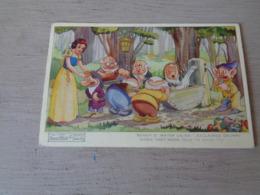 Carte ( 450 )  Thème : Disney    Blanche Neige  Sneeuwwitje  7 Dwergen  Nains ( Nain ) - Snow White & Seven Dwarfs - Disney