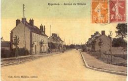 Carte Postale ANCIENNE  De  MIGENNES - Avenue De L'Ecluse - Migennes