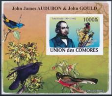 NB - [38413]TB//ND/Imperf-Comores 2009 - BL1320, Personnalités, Ornithologues, Jean-Jacques Audubon, Gould Astrapia Nigr - Vogels