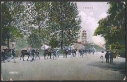 Italia / Italien / Italy: Trient (Trento), Artiglieria Di Montagna   1911 - Trento