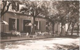 Dépt 04 - ANNOT - Hôtel De L'Avenue - Direct Baravalle - Tél. 29 - (CPSM 8,8 X 14,1 Cm) - Francia