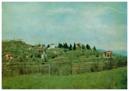 DAGNENTE ARONA - Novara