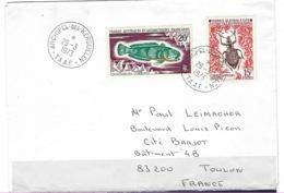 TAAF, Archipel Kerguelen, Courrier Du 29 - 03 - 1973 ( Air Mail ) - Briefe U. Dokumente