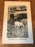 Carte Postale Ancienne CPA Circulée Casteljaloux Chercheuse De Truffes Cochon - Casteljaloux