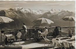 AK 0323  Zell Am See - Schmittenhöhe / Terrassen-Restaurant Um 1960 - Zell Am See