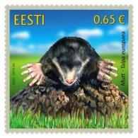 Estonia Estland Estonie 2019 (21) Estonian Fauna – The Mole - Estonia