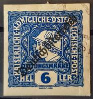 AUSTRIA 1919 - Canceled - ANK 249 - Journaux