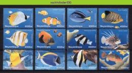 Nff042 FAUNA VISSEN FISH FISCHE POISSONS MARINE LIFE MOCAMBIQUE 2001 PF/MNH # - Fische