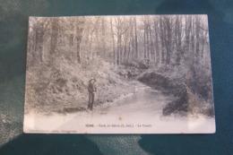 1046 Forêt Du Gâvre:Le Pondit - France