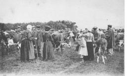 En Normandie:le Marché Aux Vaches. - France