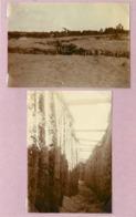 CAMP DE SOUGES (gironde)-  Tranchées  (photos Guerre 1914/18 (format 7,8cm X 5,5cm) - War, Military
