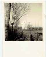 HOEKE - Damme  - Kleine Foto 6,3 X 8,5 Cm - Stenen Molen  - Ong. 1955 - Damme