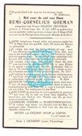 DP Remi C. Goeman ° Vlamertinge 1885 † Ieper 1936 X Hélène DeVynck - Santini