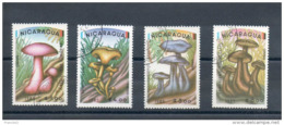 Nicaragua.  Poste Aérienne. Champignons - Nicaragua