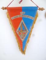 FANION 150° RI REGIMENT D' INFANTERIE VERDUN - Flags