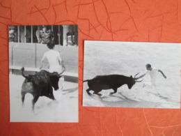 2 Photos  D Une Course Camarguaise  Lunel 1981 - Sports