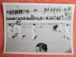 Photo  D Une Corrida. Course Camarguaise - Sports