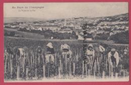 CHAMPAGNE---La Vigne Et Le Vin--Le Travail De La Vigne--Le Liage---animé - Frankreich