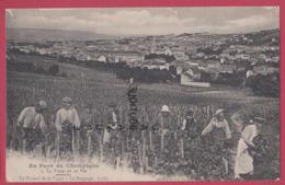 CHAMPAGNE---La Vigne Et Le Vin--Le Travail De La Vigne--Le Rognage---animé - Frankreich