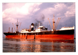 Cargo Ship - CARNATION - Build 1929 - Scrap 1965 -  Real Photo - Commerce