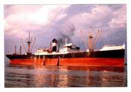 Cargo Ship - CARNATION - Build 1929 - Scrap 1965 -  Real Photo - Cargos