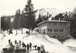 ZONA DIMARO SCIATORI  E  VECCHIO GATTO DELLE NEVI OLD SNOW TRACK BOLLO £ 20 ANNO 1967? - Trento