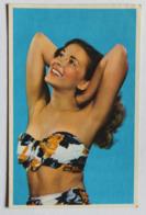 CPSM Vintage Années 60-70 Pin Up Sexy En Maillot De Bain - Pin-Ups