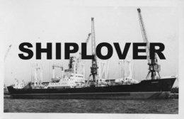 Photo Ancienne Cargo KORHOGO - Bateau / Ship / Schiff - Boats
