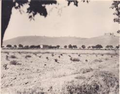 CONSUEGRA 1964 ESPAGNE Photo Amateur Format Environ 7,5 Cm X 5,5 Cm - Lugares