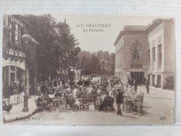 Deauville. Potinière - Deauville