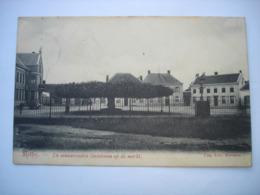 CPA - RETIE RETHY ( ARENDONK MOL DESSEL GEEL ) - DE EEUWENOUDEN LINDEBOOM OP DE MARKT ( 1907 ) - Retie