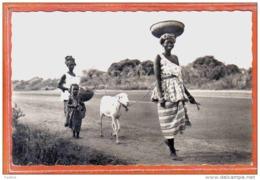Carte Postale Mali  Départ Pour Le Marché Jeune Femme Trés Beau Plan - Mali