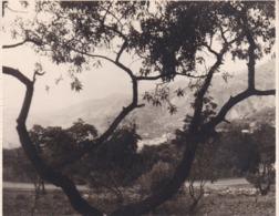 ALPUJARRAS CANAR 1963 Photo Amateur Format Environ 7,5 Cm X 5,5 Cm - Lugares