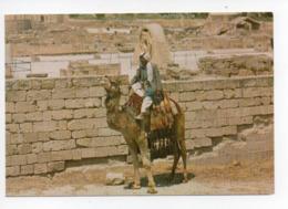 Palestine: Cisjordanie, Jericho, Hisham Palace, Chameau (19-1794) - Palästina